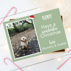 Personalised Photo Pet Christmas Eve Box