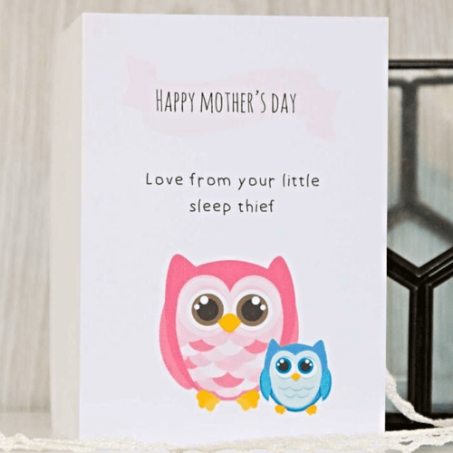 mothers-day-card-sleep-thief...-17446-p.png